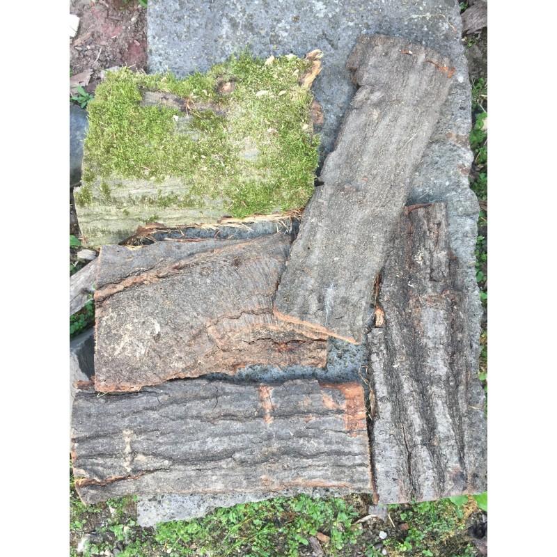 Bark-Overlay 5 pieces