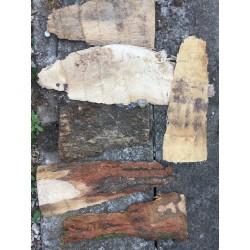 Bark-Overlays 5 pieces