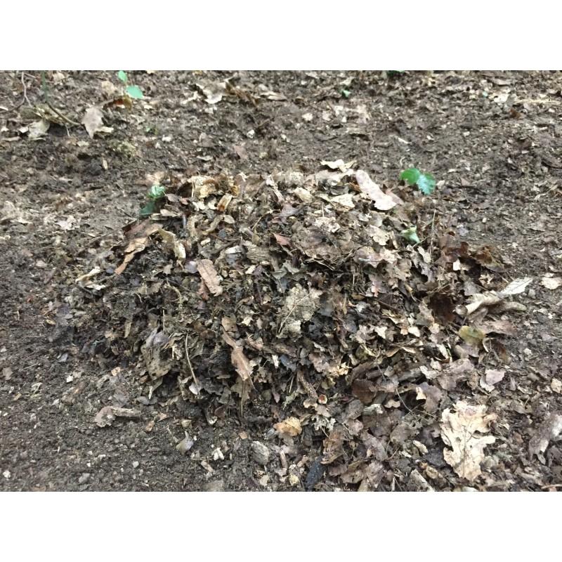 Leaf Litter Substrate 100l